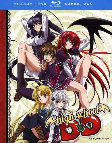 High School DxD: The Series [4 Discs] [Alternate Cover] [Blu-ray/DVD]